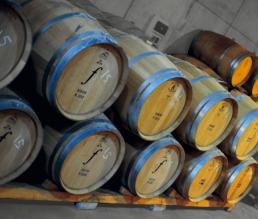 Einblick in das Weingut von Bodegas Los Frailes 2
