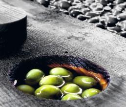 BioGourmet Epikouros Koronias Olivenöl nativ extra 2